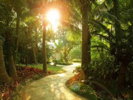 平海逸龙湾一房变两房,近500米私属海岸,畅享碧海蓝天的缤纷魅力!